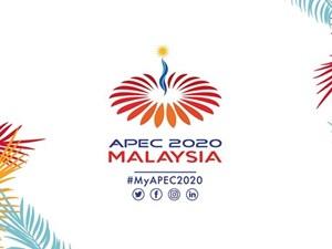 Tổ chức Hội nghị thượng đỉnh APEC 2020 trực tuyến vào tháng 12