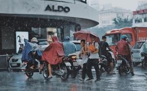 Trong tuần, nhiều nơi mưa to và dông