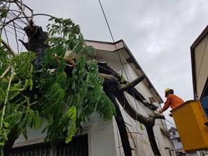 Khẩn trương khắc phục hậu quả bão số 5 và ứng phó mưa lũ