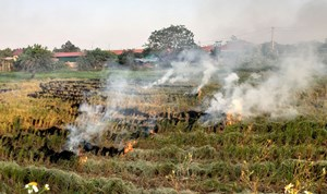 Cần chấm dứt tình trạng đốt rơm rạ gây ô nhiễm môi trường