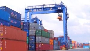 15 hãng tàu sẽ xử lý các container hàng tồn