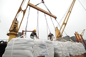 Xuất khẩu gạo bật tăng