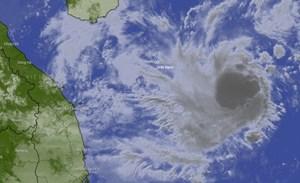 Ngày 5/11, bão số 10 đổ bộ vào đất liền các tỉnh Quảng Ngãi - Khánh Hòa