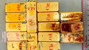 Biểu dương thành tích triệt phá vụ vận chuyển trái phép 51 kg vàng