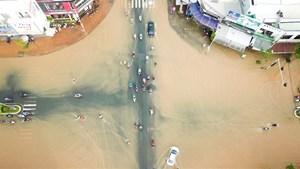 Đồng bằng sông Cửu Long: Sau triều cường, lại đến hạn mặn