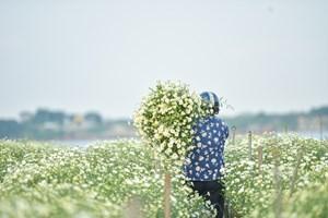 Thời tiết ngày mai 26/11: Nhiệt độ thấp nhất tại Hà Nội 21 độ C