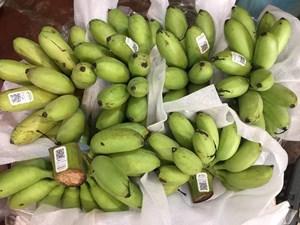 'Tấm vé' để trái cây Việt ra thế giới