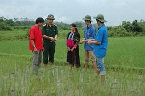 Phú Yên: Nhiều mô hình dân vận hiệu quả cao