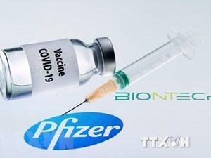 FDA điều tra các trường hợp dị ứng với vaccine Covid-19 của Pfizer
