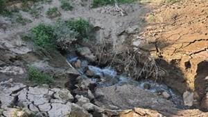Tây Ninh: Phát hiện cơ sở sản xuất tinh bột sắn xả thải trực tiếp ra môi trường