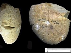 Phát hiện công cụ mài bằng đá niên đại khoảng 350 nghìn năm tại Israel