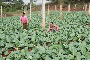 Yên Châu (Sơn La): Xã Chiềng Khoi xây dựng nông thôn mới