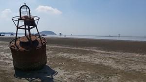 Dự án Khu neo đậu tránh trú bão Lạch Thơi (Nghệ An): Gần trăm tỷ đồng 'chìm' xuống biển