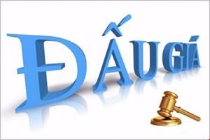 Thông báo đính chính đấu giá tài sản