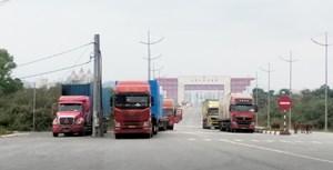 Hơn 4.700 tấn hàng hóa thông quan tại Móng Cái trong ngày sau Tết
