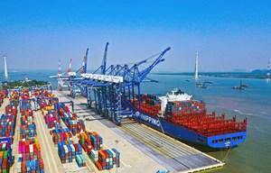 Hải Phòng: Khởi động dự án 2 bến cảng container đón tàu 100.000 DWT