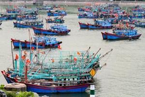 Hải Phòng; Yêu cầu các phương tiện hoạt động trên biển về nơi tránh trú bão