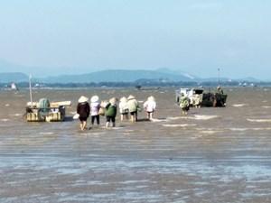 Quảng Ninh: Đi đào giun biển, một người bị nước cuốn tử vong