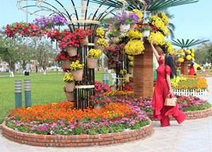 Tam Kỳ (Quảng Nam): Người dân du xuân giữa sắc hoa và nắng vàng