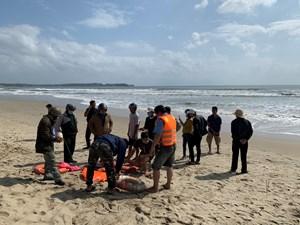 Quảng Ngãi: Bị đuối nước vì lao ra biển cứu người