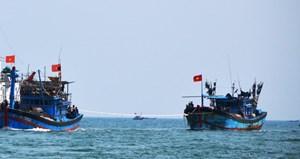 Quảng Ngãi: Điều tra vụ 3 ngư dân tử vong trên biển