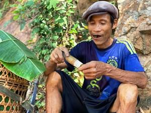 Quảng Ngãi: 'Người rừng' Hồ Văn Lang qua đời