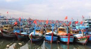 Quảng Ngãi: Tàu thuyền vào bờ tránh bão số 5