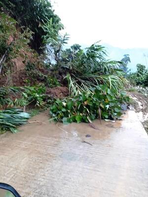 Quảng Nam: Động đất và mưa lớn gây sạt lở ở huyện Nam Trà My