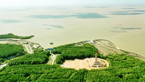Cà Mau: Đẩy mạnh phát triển du lịch thân thiện với môi trường