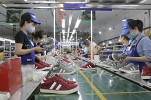 Mở cánh cửa vào thị trường Bắc Âu: Cơ hội mới cho hàng Việt