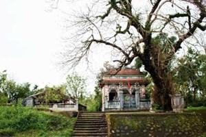 Trải nghiệm làng cổ Phước Tích