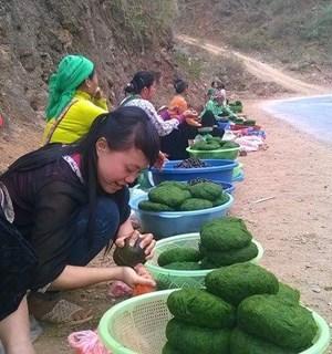 Sơn La, vùng đất nhiều đặc sản
