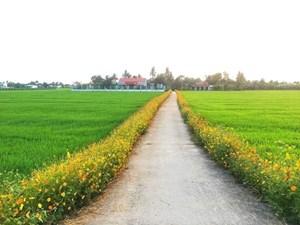 Thanh Hóa: Bản Vịn xây dựng nông thôn mới