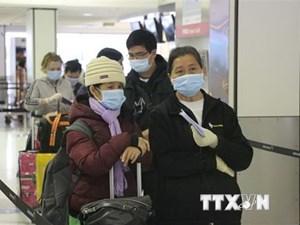 Đưa hơn 340 công dân Việt Nam từ Liên bang Nga về nước an toàn