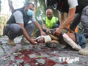 WHO: Một nửa số bệnh viện ở Beirut không thể hoạt động do bị phá hủy