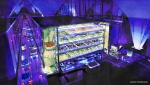 Nhật Bản: Nghiên cứu sản xuất thực phẩm trên Mặt Trăng