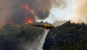 Đám cháy rừng lớn ở Pháp đã được khống chế