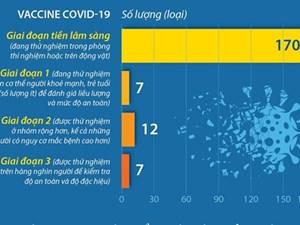 Gần 200 vaccine Covid-19 đang được nghiên cứu, thử nghiệm