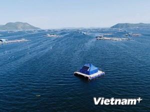 Các nhà khoa học Việt Nam-Australia hợp tác sáng tạo trong mùa dịch