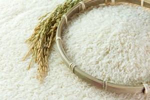 Chất lượng gạo Việt