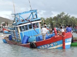 Tàu ngư dân Quảng Ngãi bị đâm chìm: 1 người mất tích, 1 người tử vong