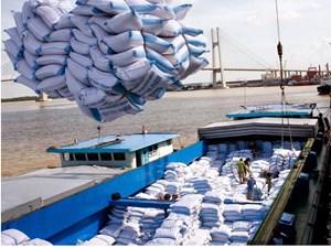 Thương hiệu hạt gạo Việt