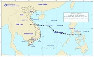 Cơn bão số 5 được dự báo chính xác để giảm thiểu thiệt hại