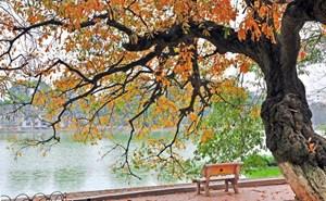 Hà Nội trời dịu mát, mưa rải rác, nhiệt độ từ 24-25 độ C