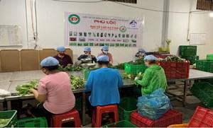 TP HCM: Các giải pháp tổ chức sản xuất gắn với chuỗi giá trị tại các xã nông thôn mới