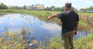 Quảng Nam: Một cụm công nghiệp xả thải gây ô nhiễm