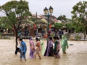 Sẵn sàng sơ tán 260.722 người dân tránh bão số 7