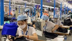 Thu nhập của người lao động giảm mạnh