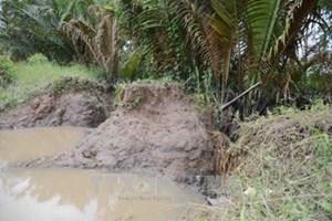 Sóc Trăng: Triều cường dâng cao bất ngờ tại Cù Lao Dung