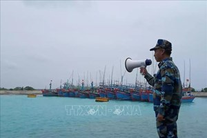 Điều 3 tàu kiểm ngư tìm kiếm ngư dân tàu cá mất tích trên biển